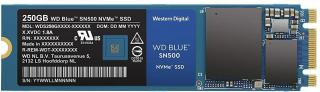 Blue M.2 SN500 NWME 250GB Solid State Drive (WDS250G1B0C)